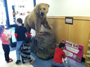 Bears Exhibit