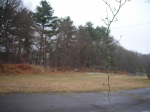 Proposed garden location