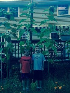 Bottiglio bryan & Scott 3rd height